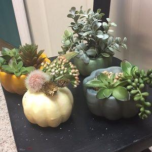 Artificial Succulent Pumpkins